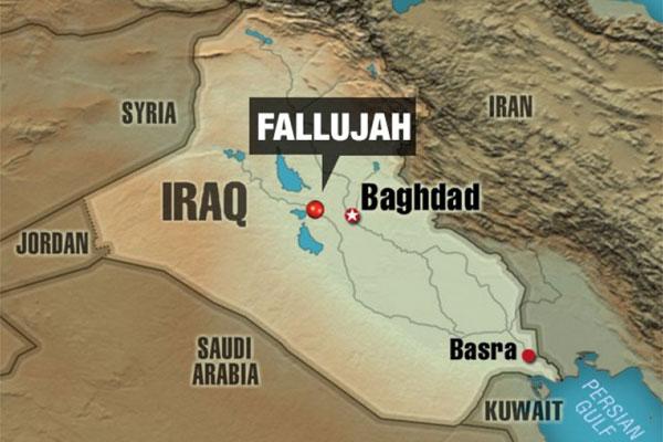 fallujah story 8