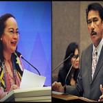 Sen. Sotto pinayuhan si Sec. Ubial na unawain at ipatupad ang RH Law