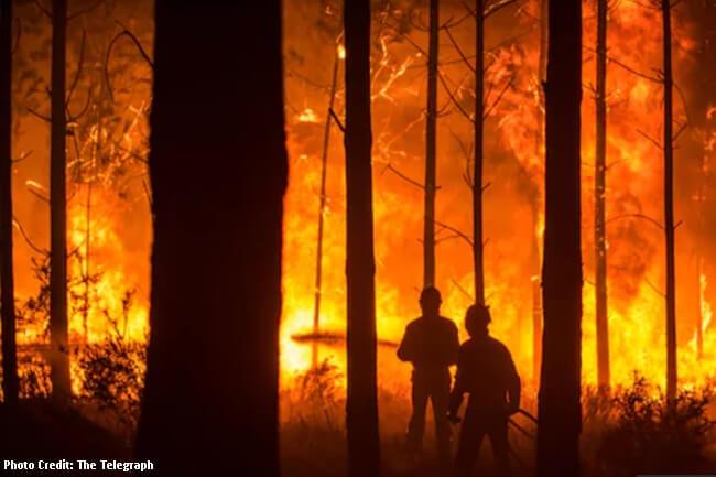 Wildfire sa Portugal