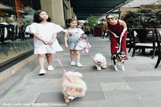 HEART EVANGELISTA DOG LOVER ASO