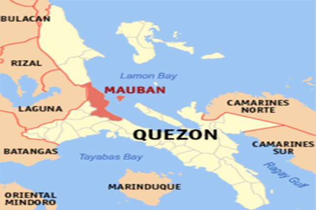250px-Ph_locator_quezon_mauban