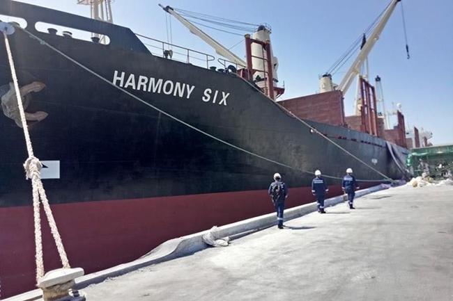 HARMONY SIX