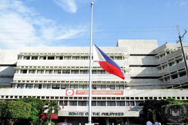 senate flag