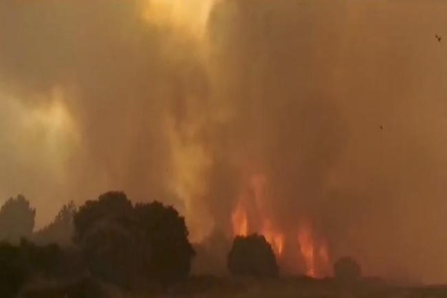 wildfire 2